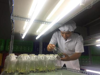 Nguyen Duc Quang, a young farmer, received the Luong Dinh Cua Award 2017