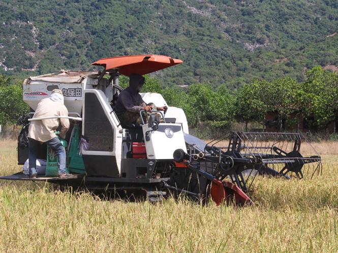 Đưa cơ giới hóa vào sản xuất nông nghiệp: Góp phần giải phóng sức lao động và tăng hiệu quả sản xuất