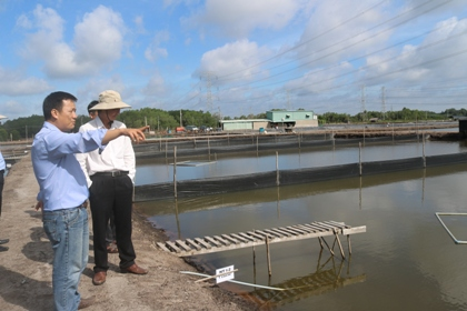 Converting the inefficient aquaculture farming areas into the farming areas of Asian sea bass
