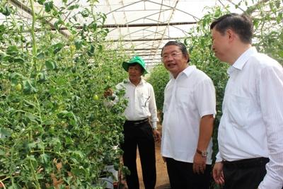 HĐND tỉnh giám sát tình hình hoạt động của Trung tâm Ứng dụng công nghệ sinh học Đồng Nai