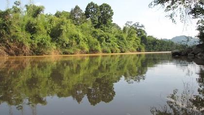 Biên soạn sách về khu dự trữ sinh quyển Đồng Nai